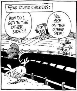 Chickenstupidotherside
