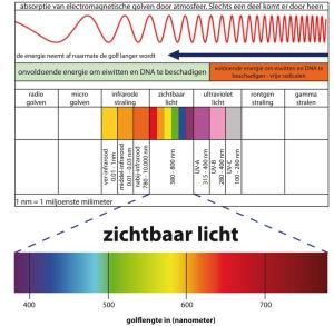 frequentie spectrum