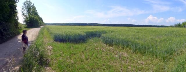 Schlotheim uitkijkend over de velden