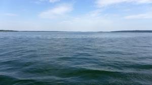 PlauerSeeplaswater
