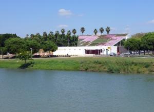 SevillaGuadalquivirpalmas