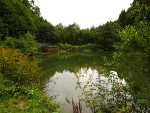 WinterbergBodensee