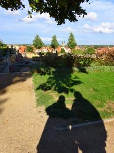 Quedlinburg schaduwuitzicht
